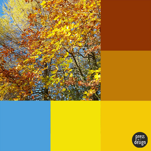 Tuesday Colour Inspiration – Autumn Leaves