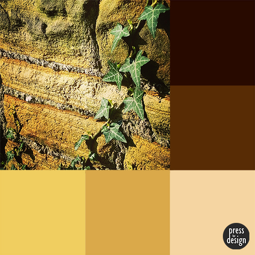 Tuesday Colour Inspiration – climbing ivy