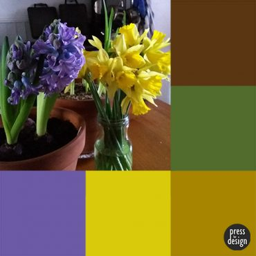 Tuesday Colour Inspiration: Spring Flowers